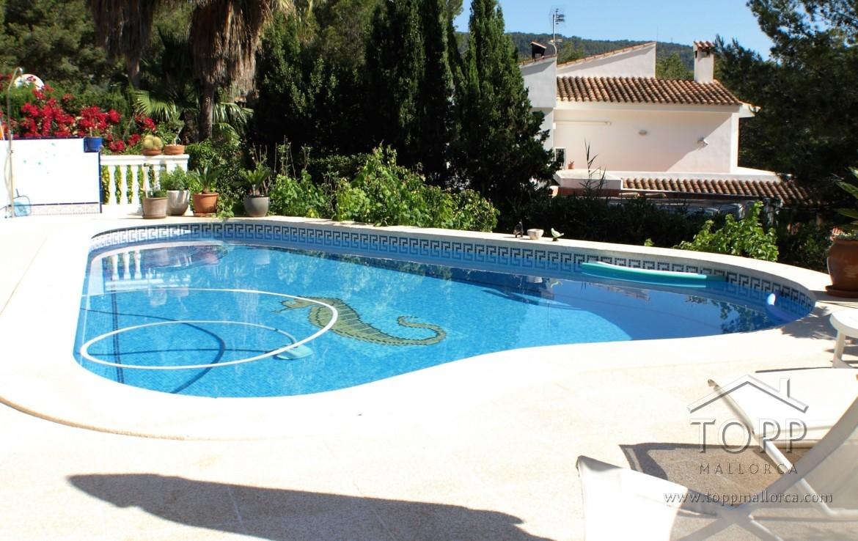 piscina casa cas catala